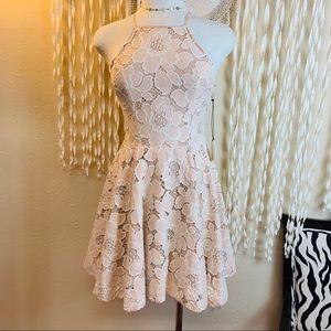 Tularosa Cream Lace Skater Skirt Dress NWT XS